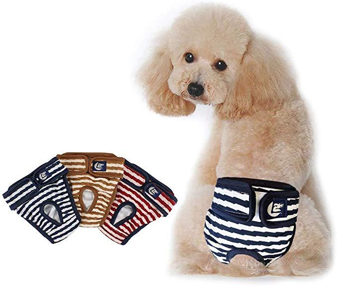 犬サニタリーパンツ